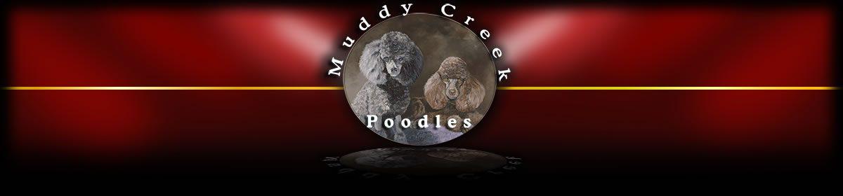 Muddy Creek Poodles